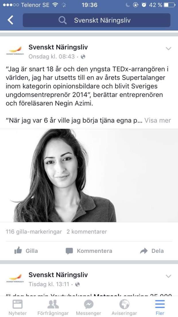 Svenskt Näringsliv_Negin Azimi